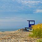 "The North Beach Watcher by Arthur ""Butch"" Petty"
