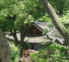 The Hidden Temple, S. Korea by Debbie Montgomery