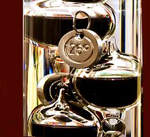 Galileo thermometer by Luca Renoldi
