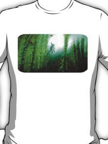 Link's Storm T-Shirt