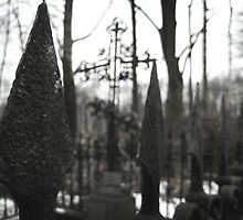 Fence - St. Petersburg Cemetery by Boxx
