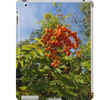 Invermoriston Berries iPad Case/Skin