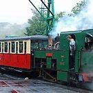 Snowdonia Mountain Railway by Arie Koene