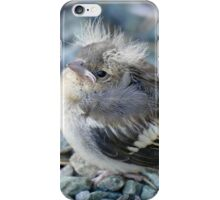 Please Don't Step On Me! - Chaffinch - NZ iPhone Case/Skin