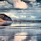 Low Tide at Charmouth by naturelover