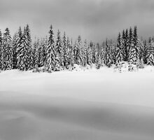 Before the Snowstorm by Peter Borovicka