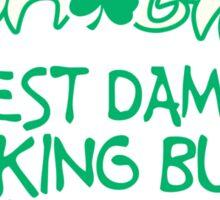 IRISH GIRL BEST DAMN DRINKING BUDDY A GUY COULD HAVE Funny Geek Nerd Sticker