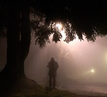 stranger in the fog by Bill vander Sluys