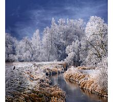 Cold Serenity Photographic Print