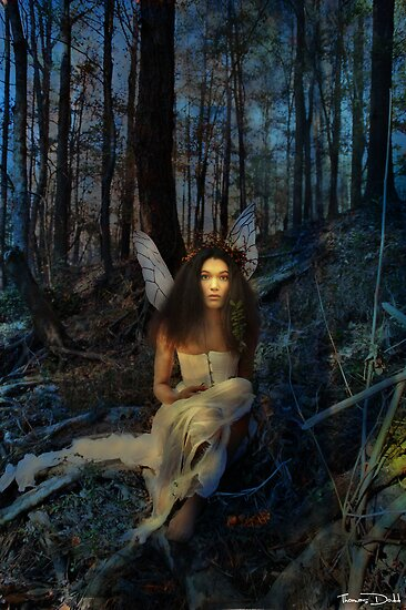 Twilight by Thomas Dodd