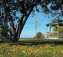 Gazebo and Apples by ArianaMurphy