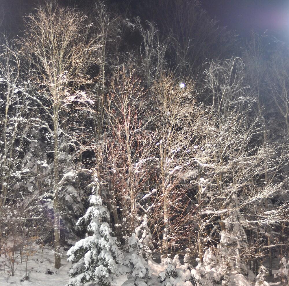 winter renaissance by ALEX GRICHENKO
