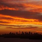 Sunset over Sydney, NSW, Australia  by Samantha  Goode