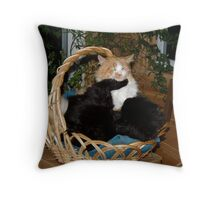 My basket!!!! Throw Pillow
