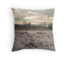 Snow Field Throw Pillow