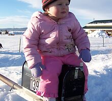 Mailbox Rides! by Katie  Marie