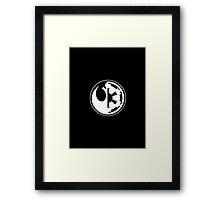 Star Wars - Rebel Alliance/Galactic Empire Framed Print