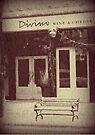 Divino in the Winter by Leanna Lomanski