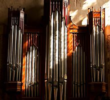Organ Pipes by Country  Pursuits