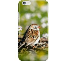 Field Sparrow iPhone Case/Skin