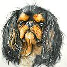 King Charles Spaniel by BarbBarcikKeith