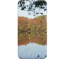 Fall Refractions iPhone Case/Skin