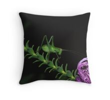 Covers Blown Throw Pillow