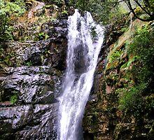 Mathinna Falls  Tasmania by julie anne  grattan