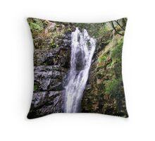 Mathinna Falls  Tasmania Throw Pillow
