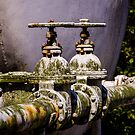 Weathered Water Valves by Reese Ferrier
