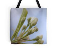 Prelude to the Pops Tote Bag