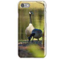 Geese Enjoying the Lake iPhone Case/Skin