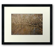 Coming Winter Framed Print