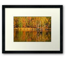 Teeter Pond, Finger Lakes National Forest, Hector, NY, USA Framed Print