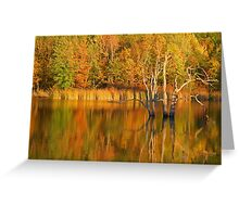 Teeter Pond, Finger Lakes National Forest, Hector, NY, USA Greeting Card