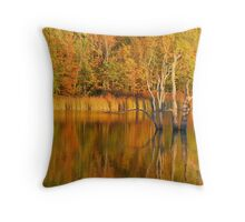Teeter Pond, Finger Lakes National Forest, Hector, NY, USA Throw Pillow