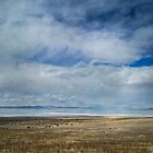 Clouds and Mountains Reflected in Great Salt Lake by Brent Olson