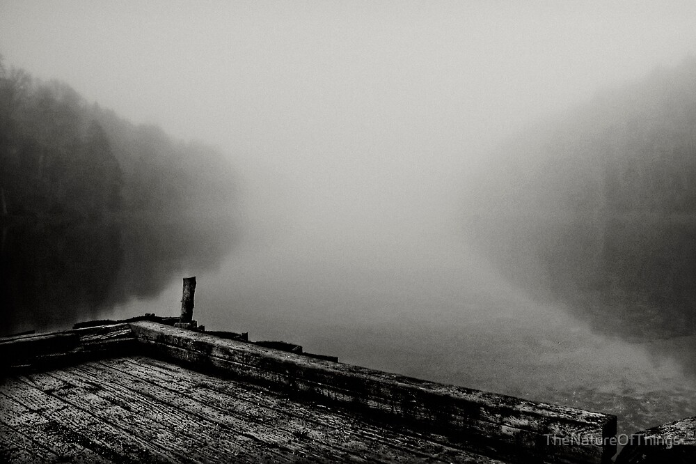 Silence by TheNatureOfThings
