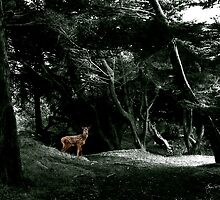 Fawn in a Green Wood by Wayne King