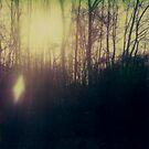 #001 by Paul Desmond