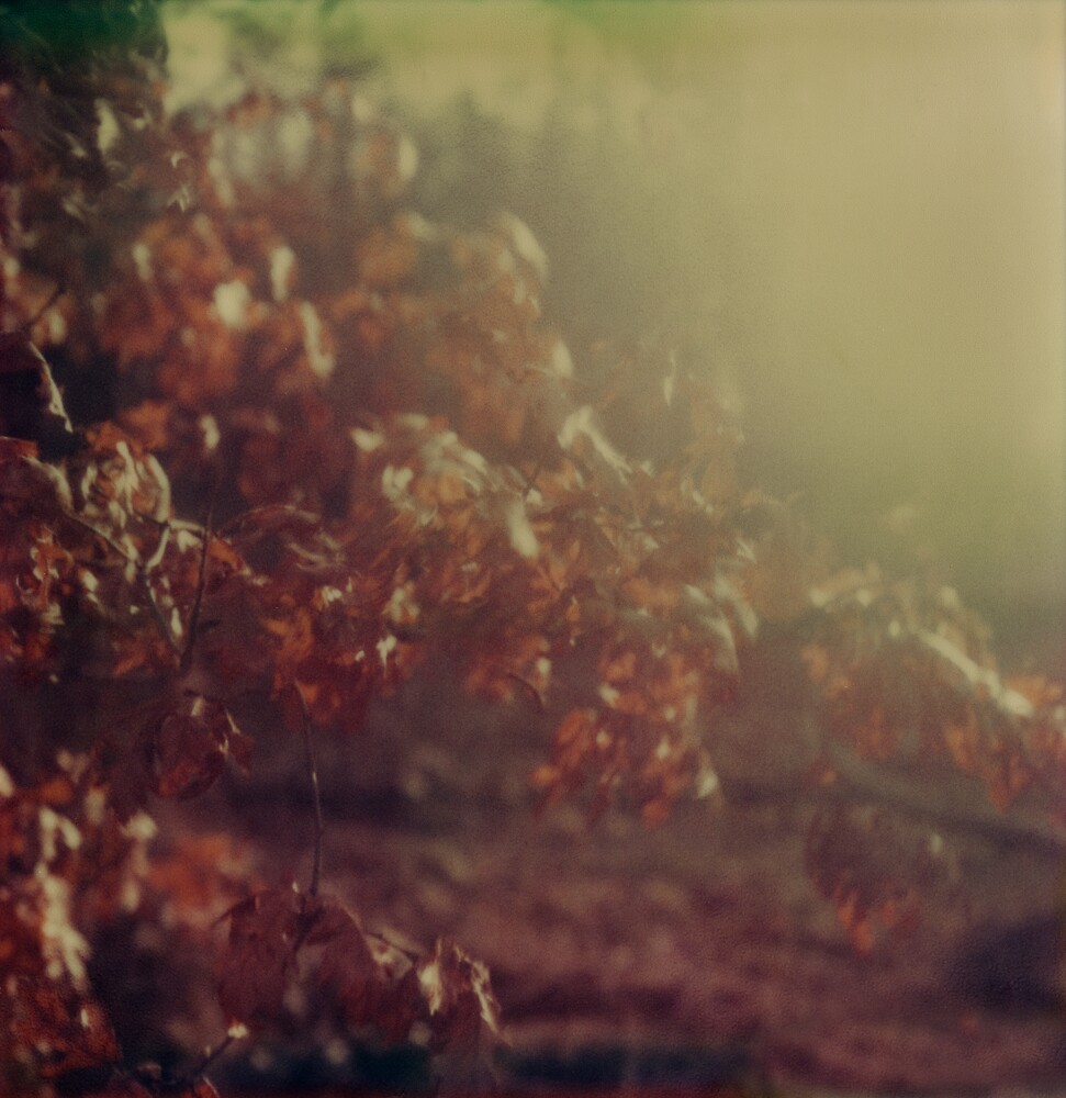 #002 by Paul Desmond