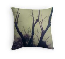 #003 Throw Pillow
