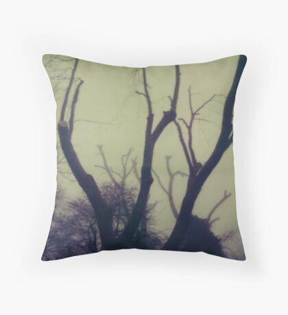 #003 Throw Pillow