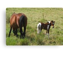 Mother and Baby are Doing Fine Canvas Print