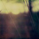 #004 by Paul Desmond