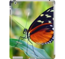 Macro Orange and Black Butterfly iPad Case/Skin