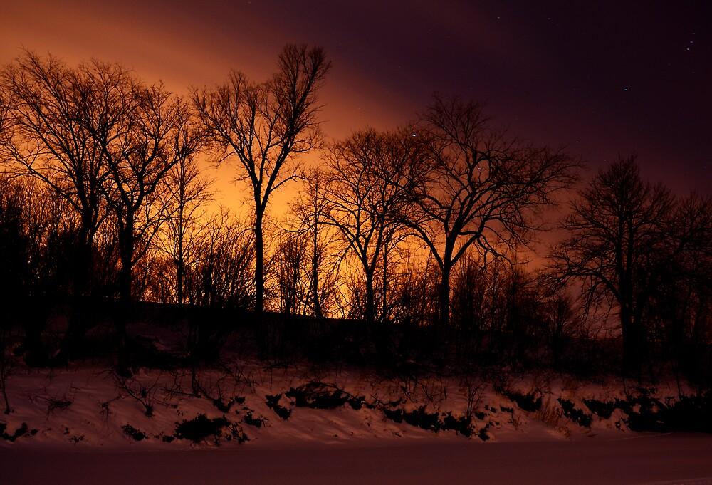 Riverbanks by Geoffrey