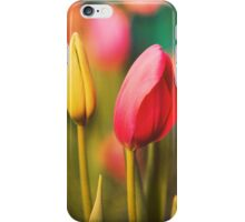 Vintage Tulips: Colors of Spring iPhone Case/Skin