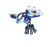 Becca's Primal Kyogre (No outline) Photographic Print