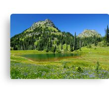 Summer at Chinook Pass - Mt. Rainier N. P. Canvas Print